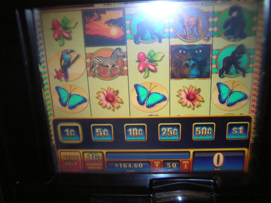 Lucky star cassino concho horas